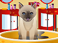 Petz Fashion играть онлайн